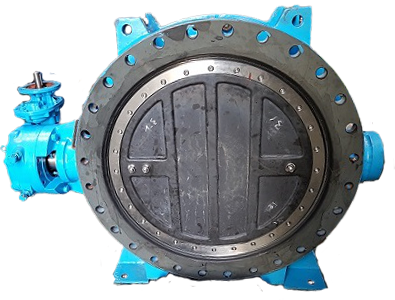 Rubber Lined Butterfly Valve1